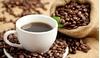 Giá cà phê ngày 14/7: Liên tục giảm trong tuần qua