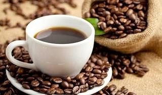 Giá cà phê hôm nay 28/9: Tiếp tục tăng nhẹ thêm 100 đồng/kg
