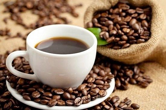 Giá cà phê hôm nay 20/4: Giữ nguyên giá, dao động từ 30.600 - 31.500 đồng/kg