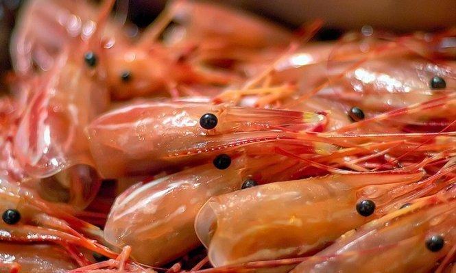 Khi ăn hải sản, tuyệt đối không nên ăn những bộ phận này