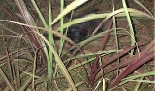 Quảng Nam: Sau 3 ngày mất tích, người đàn ông được phát hiện tử vong dưới vực