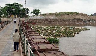 Hải Phòng: Rùng mình hàng trăm xác lợn chết trôi trên sông Hoá