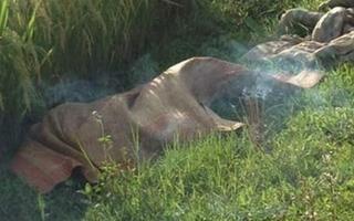 Nam Định: Phát hiện thi thể người đàn ông dưới ruộng lúa