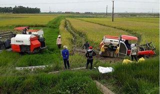 Côn đồ 'bảo kê' máy gặt đánh 2 nông dân trọng thương trên cánh đồng