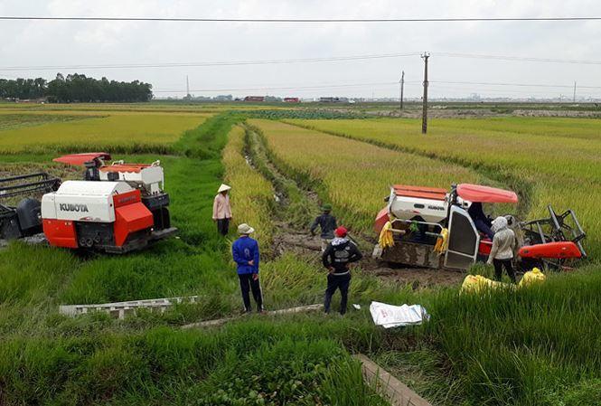 Thanh Hoá: Liên tiếp xảy ra các vụ côn đồ đánh người nghi do bảo kê địa bàn gặt lúa