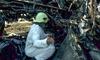 Hoàn thành việc giải mã hộp đen của máy bay Nga bị cháy