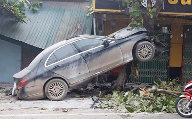 Phú Thọ: Xe sang Mercedes trèo lên cây bàng, tài xế nguy kịch