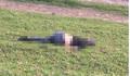 Nghi vấn nam thanh niên bị sát hại, thi thể để trên triền đê