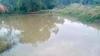 Nhảy xuống hồ cứu con, thai phụ và con gái 4 tuổi bị chết đuối