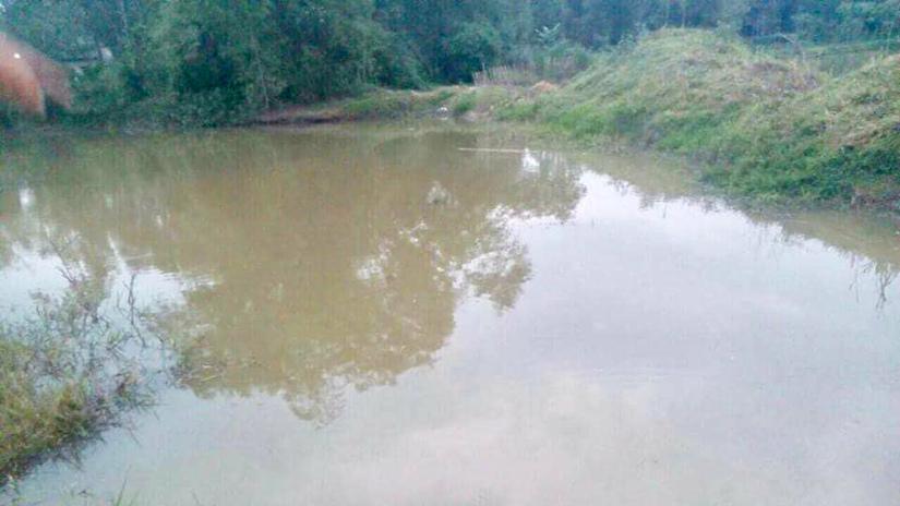 Thai phụ cùng con gái 4 tuổi chết đuối khi đi cắt cỏ