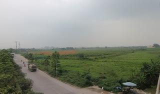 Ảnh: Dự án KĐT Hà Nội Westgate 'bỏ hoang' 10 năm, thành nơi thả bò
