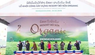 Vinamilk khởi công xây dựng tổ hợp 'resort' bò sữa Organic quy mô 5.000ha tại Lào