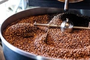 Giá cà phê hôm nay 23/10: Tăng nhẹ trở lại 100 đồng/kg