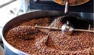 Giá cà phê hôm nay 14/8: Tăng đột biến 700 đồng/kg