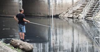 Hình ảnh khiến ngàn người Hà Nội 'xúc động': Người đàn ông câu cá sông Tô Lịch