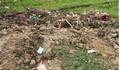 Hà Nội: Người phụ nữ bị sát hại, thi thể phi tang ở bãi rác