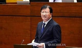 Phó Thủ tướng Trịnh Đình Dũng: Xử lý dứt điểm vi phạm HH Linh Đàm