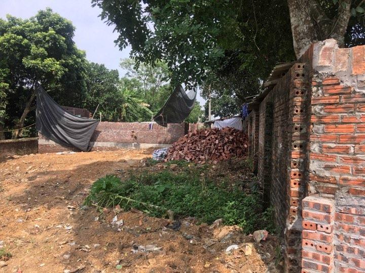 Hơn 6 tấn lợn mắc dịch tả lợn Châu Phi được chôn lấp ngay trong khu dân cư2