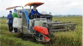 Hai cán bộ huyện 'ăn chặn' hàng trăm triệu tiền máy cày, máy gặt của nông dân