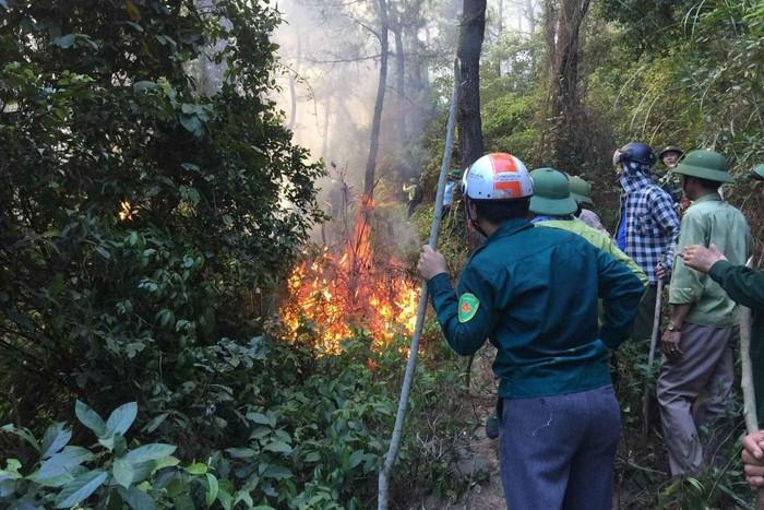 Cháy rừng ở Hà Tĩnh: Hai cây xăng gần đám cháy nơm nớp lo sợ