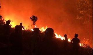 Hé lộ nguyên nhân dẫn đến vụ cháy rừng khủng khiếp ở Hà Tĩnh