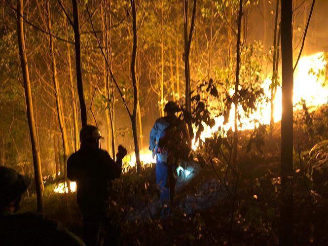 Danh tính người đàn ông bị công an tạm giữ nghi gây ra vụ cháy rừng lớn nhất Hà Tĩnh