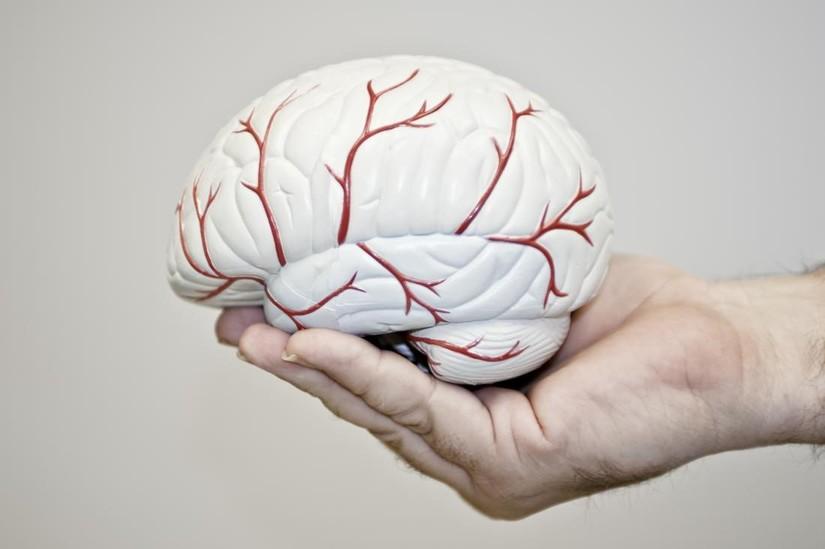 Những điều cần biết về bệnh thiểu năng tuần hoàn não sau sinh
