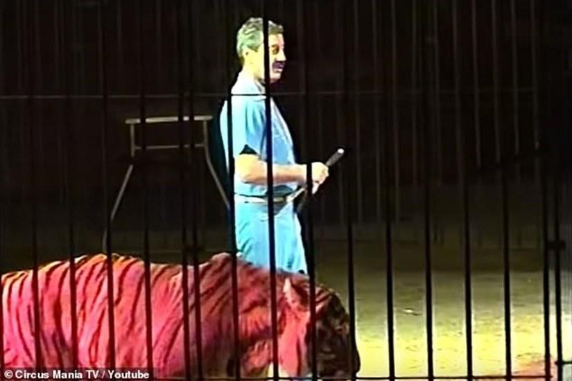 Kinh hoàng chứng kiến nghệ sĩ xiếc thú hàng đầu thế giới bị 4 con hổ vồ chết