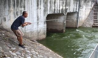 Thay đổi kinh ngạc của sông Tô Lịch sau 2 ngày 'thau rửa' bằng nước Hồ Tây
