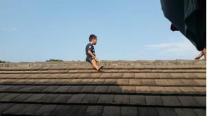 Bị dắt đi cắt bao quy đầu, bé trai trèo lên mái nhà 'cố thủ' suốt 2 tiếng