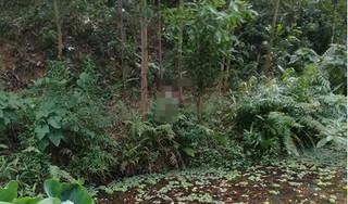 Tá hỏa phát hiện thi thể người đàn ông đang phân huỷ trong rừng keo