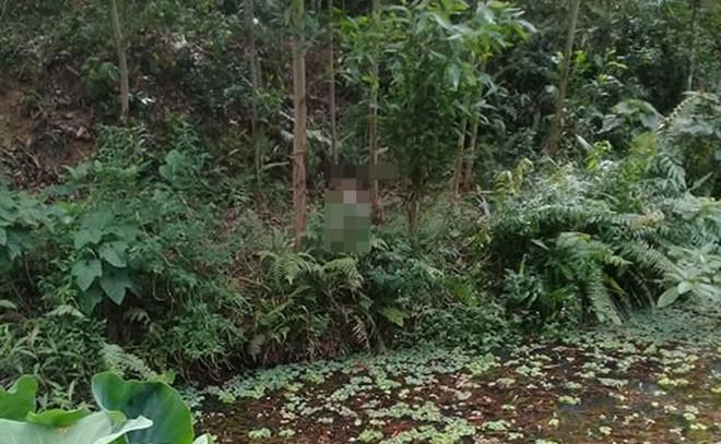 Quảng Nam: Phát hiện thi thể người đàn ông đang phân huỷ trong rừng keo