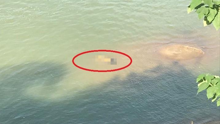 Nghệ An: Tá hoả phát hiện thi thể phụ nữ nổi trên sông