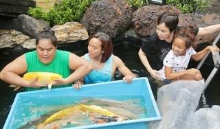 Tin tức sao Việt hôm nay 20/7: Vợ chồng Việt Hương vui đùa trong hồ cá 5 tỷ của Hoàng Mập