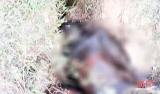 Phát hiện thi thể người đàn ông đang phân hủy dưới mương thoát nước