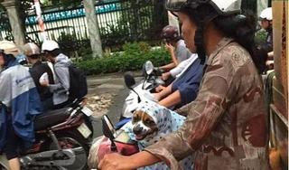 Hình ảnh người phụ nữ nhường áo mưa cho chú chó nhỏ gây bão mạng