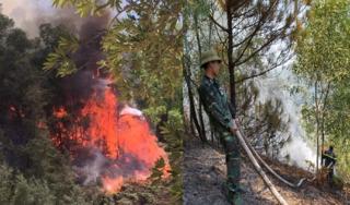 Cháy rừng ở Nghệ An nghi do người dân đốt vàng mã rằm tháng 7
