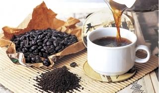 Giá cà phê hôm nay 11/9: Tiếp tục tăng theo đà 500 đồng/kg