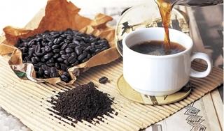 Giá cà phê hôm nay 15/8: Tiếp tục tăng thêm 100 đồng/kg
