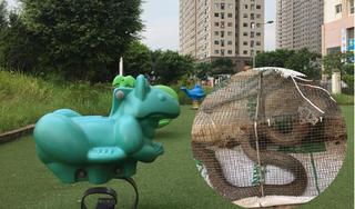 Rùng mình bắt được hàng loạt rắn độc ở khu chung cư Hà Nội