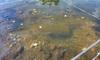 Hải Phòng: Tá hoả phát hiện quả bom 'khủng' dưới sông Tam Bạc