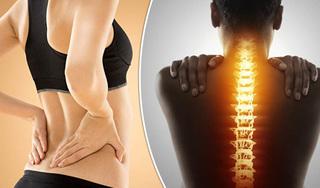Đau lưng nên ăn gì để giảm đau hiệu quả