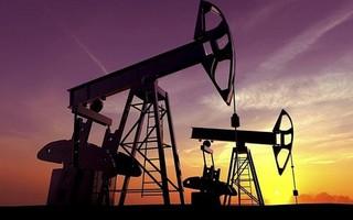 Giá xăng dầu hôm nay 29/8: Tiếp tục xu hướng giằng co