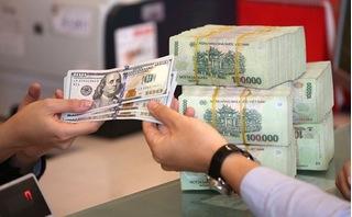 Tỷ giá USD hôm nay 29/8: Giá USD ngân hàng tăng nhẹ