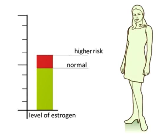 u xơ tử cung liên quan tới mức độ estrogen