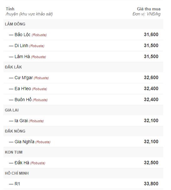 Giá cà phê hôm nay 6/9: Giảm mạnh 600 đồng/kg theo đà của thế giới