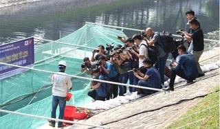 Thả hàng trăm con cá Koi xuống sông Tô Lịch để chứng minh nước sạch