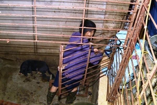 Phát hiện hầm 'bí mật' nhốt chó trộm cắp trong đường dây 'cẩu tặc' có quy mô 'khủng'