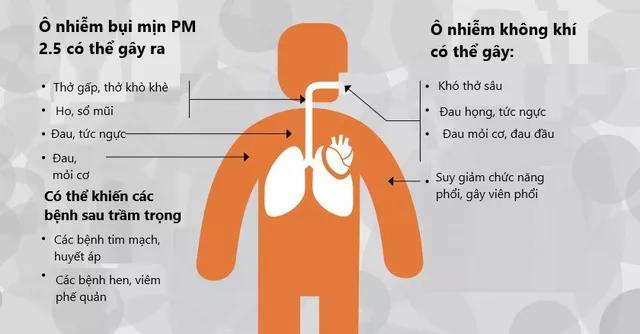 Ô nhiễm không khí những ngày này ở Hà Nội có thể tác động tới cả bào thai - Ảnh 3.