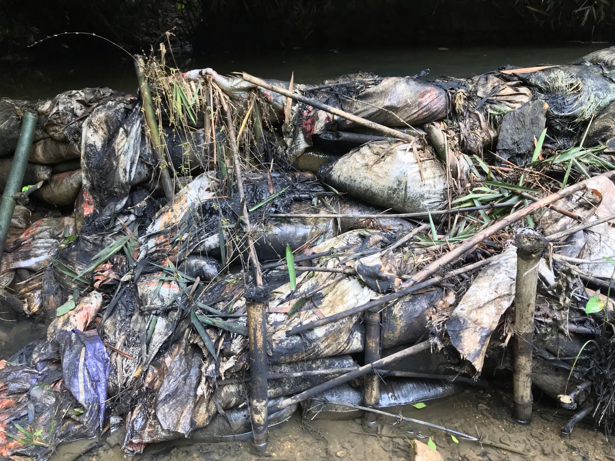 Cận cảnh sòng suối Trâm phủ kín dầu dẫn vào nhà máy nước Sông Đà